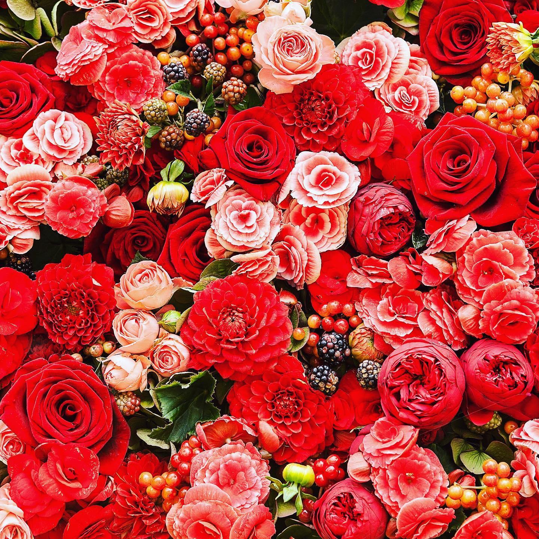 Fleuriste Lord of Rose Lyon