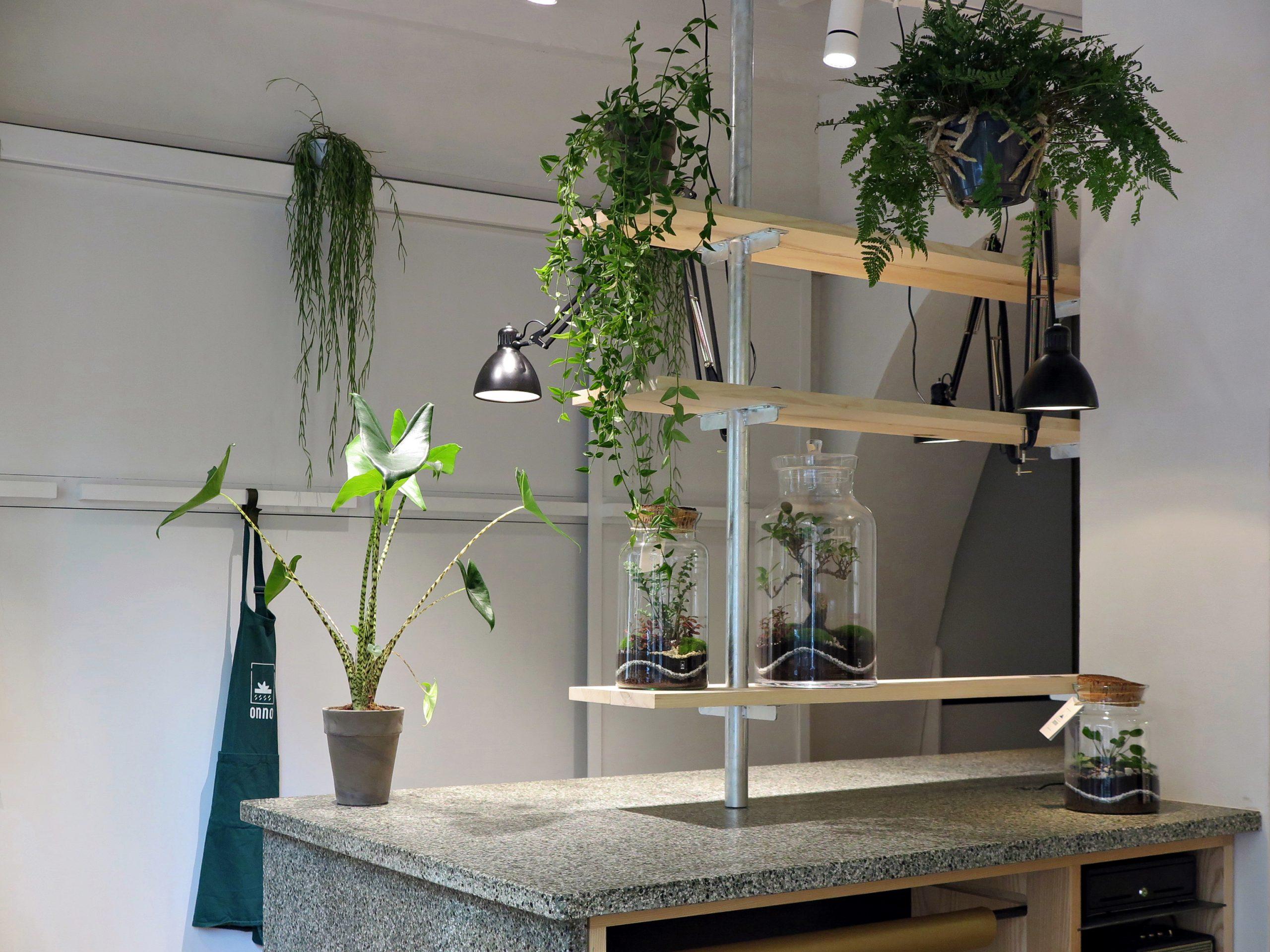 Boutique Onno Jardins Intérieurs